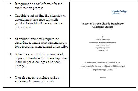 Dissertation management international